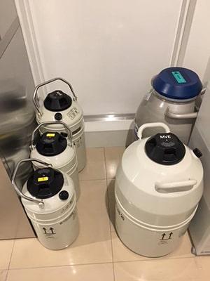予備用液体窒素を常に確保